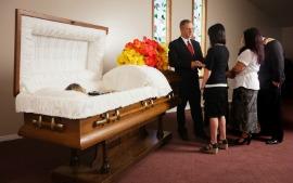 Memorial or Celebration of Life   Haywards Funerals