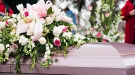Green Burial / Ecoscience   Haywards Funerals